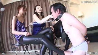 face slapping femdom domination